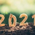 Bonne année… quand même